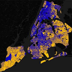 NYC Housing Ownership Distribution